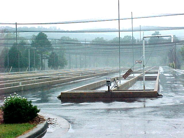 Russell county kentucky for Fish hatchery ky
